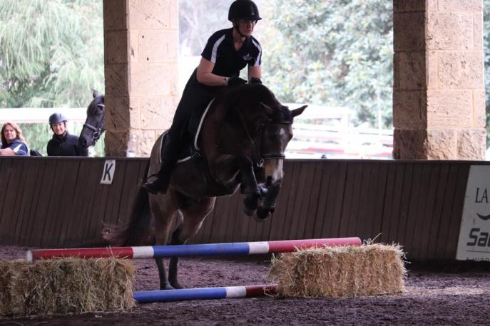 brookleigh-training-comp-aug18a